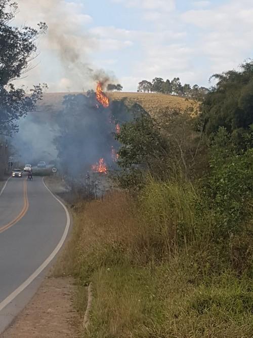 Bombeiros combatem incêndio em bambuzal na MG 482